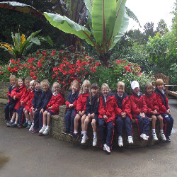 Prep 1 visit to Cotswold Wildlife Park