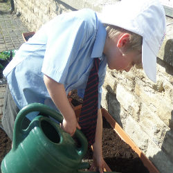 Gardening galore! Reception children create their own sensory garden